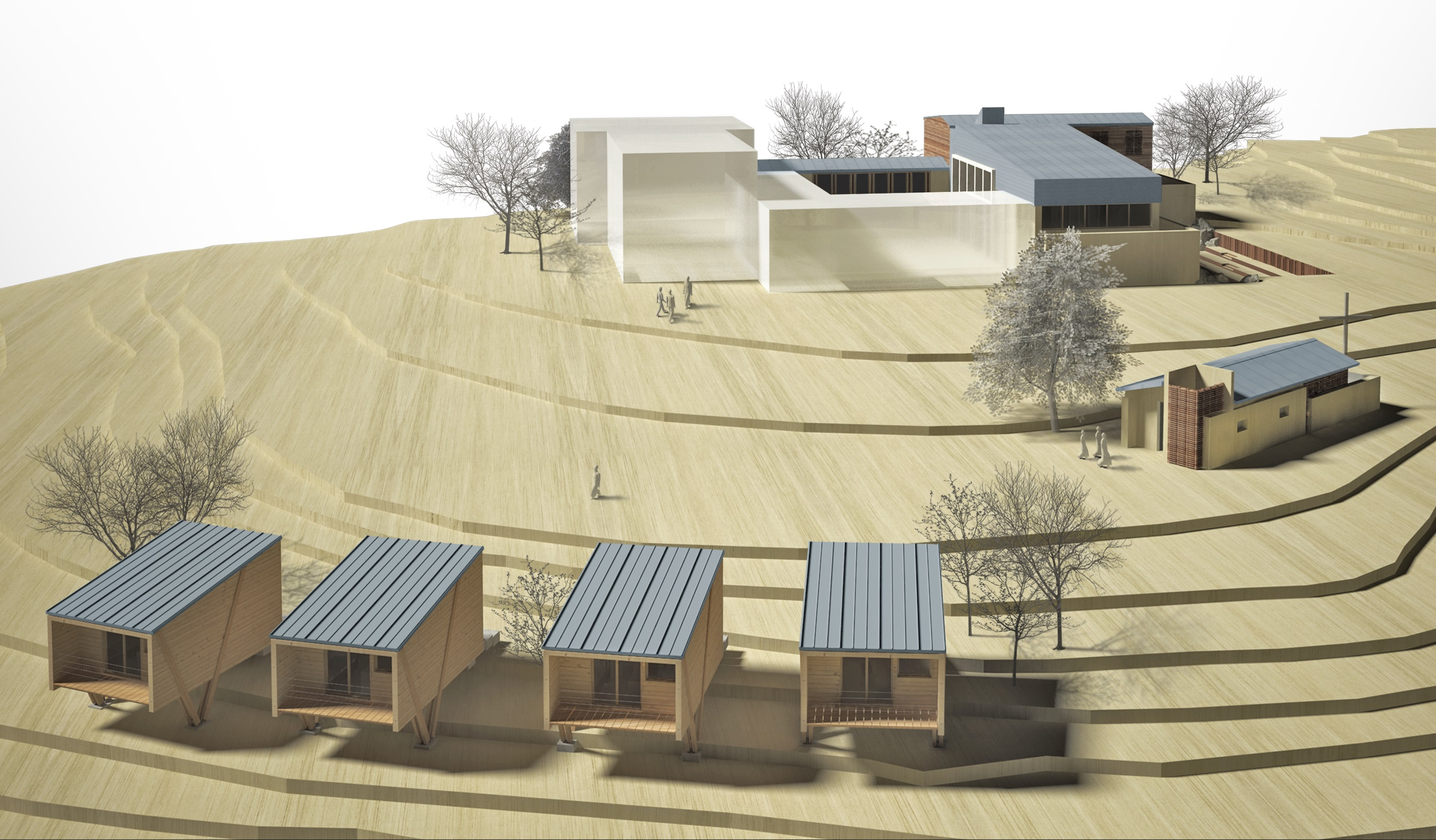 progetto per il futuro di siloe - Copia